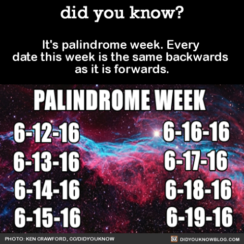 Storm Signs A Palindrome For Palindrome Week Like Mercury