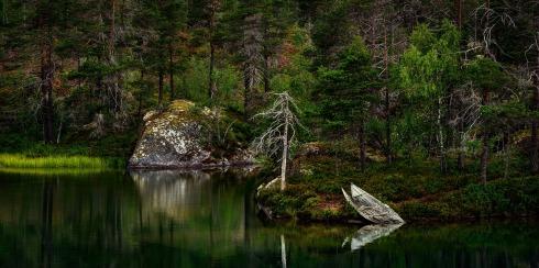nature-3262780_1280