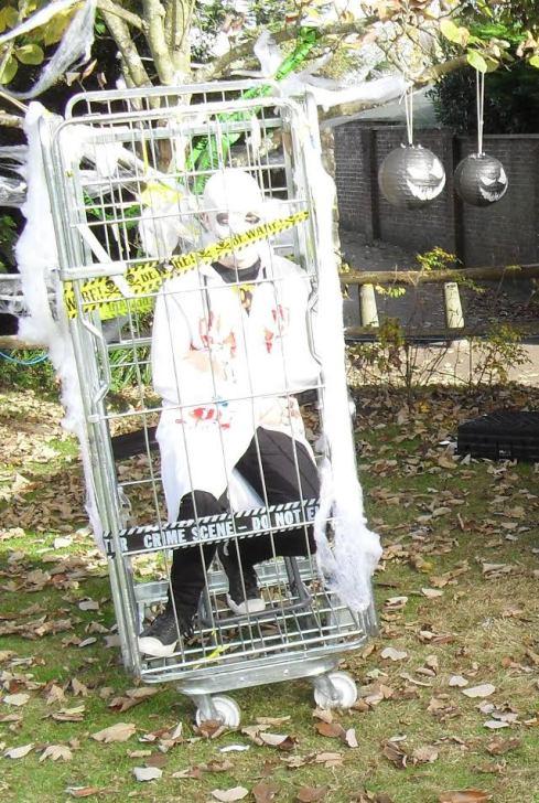 caged-liz